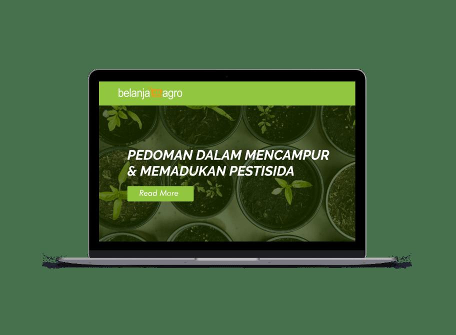 Belanja Agro